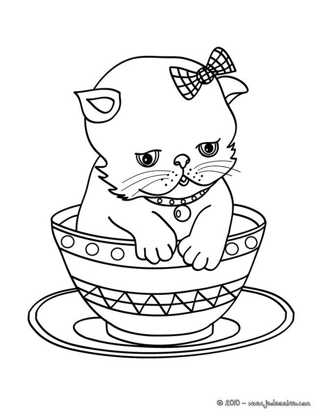 dessin de chat a imprimer difficile