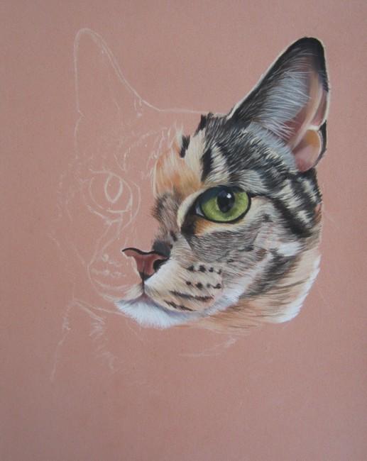 dessin de chat au pastel sec
