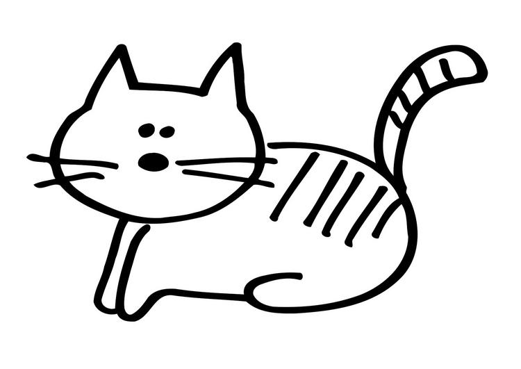 dessin de chat blanc