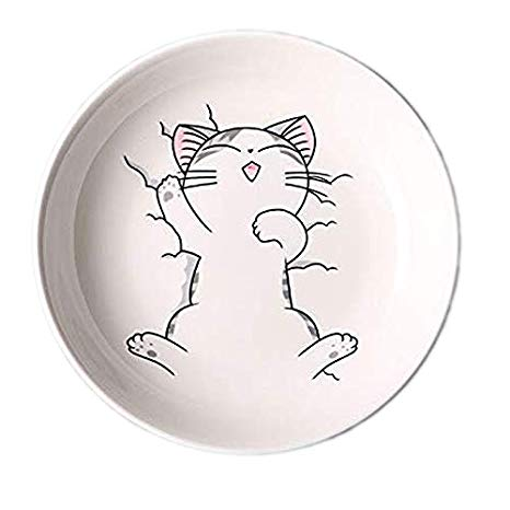 dessin de chat chinois