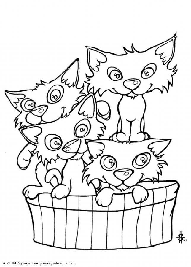 Coloriage Famille Chat.Dessin De Chat Dans Un Panier Les Dessins Et Coloriage