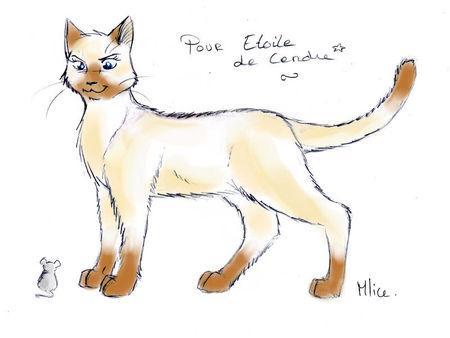 dessin de chat de la guerre des clans