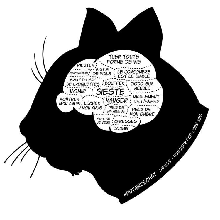 dessin de chat en ombre chinoise