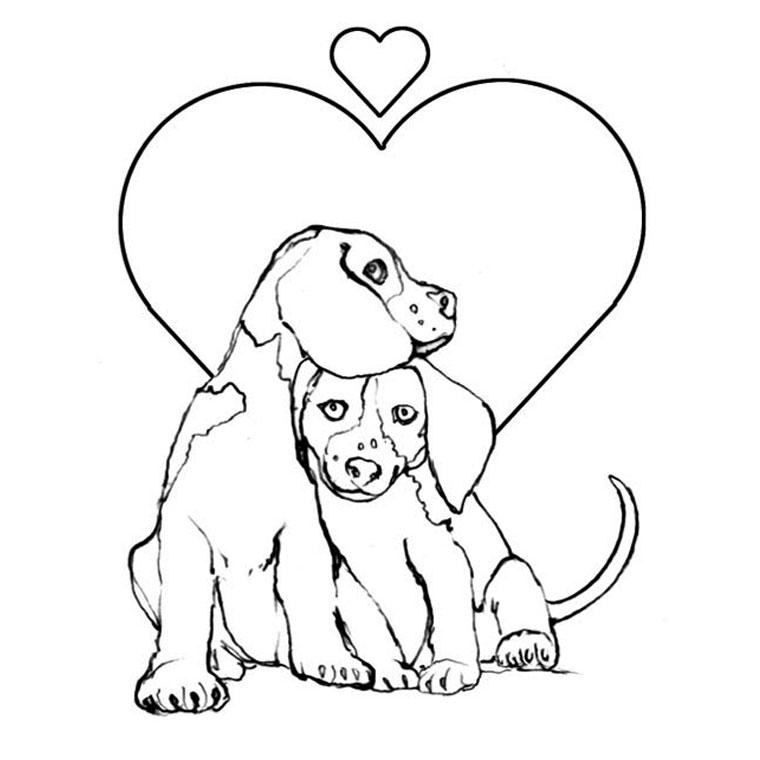 dessin de chat et chien a imprimer
