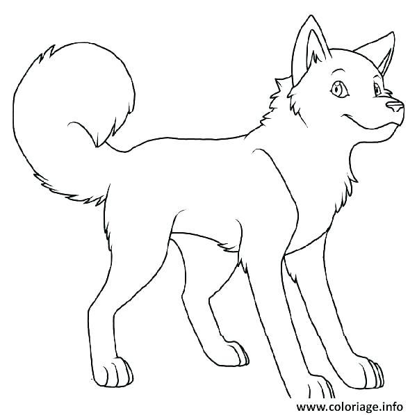 dessin de chat et de chien facile