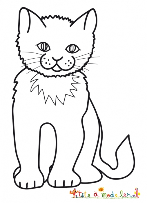 dessin de chat facile assis - Les dessins et coloriage