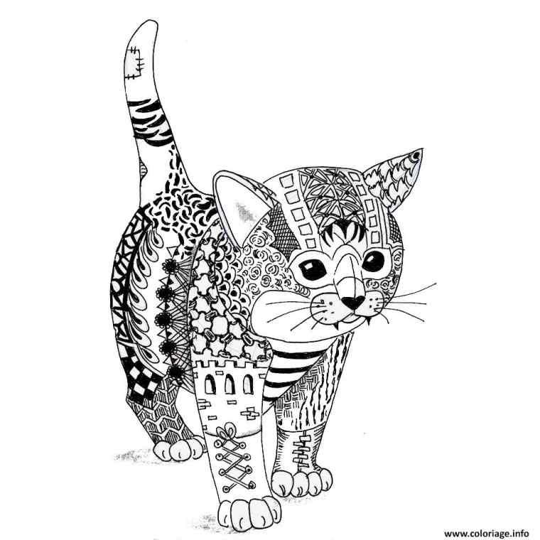 site de chat français