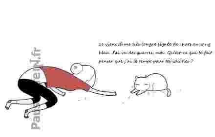 dessin de chat humour