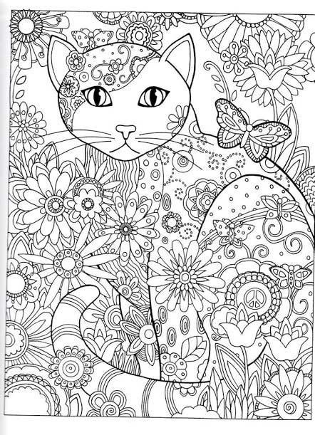 dessin de chat pour adulte