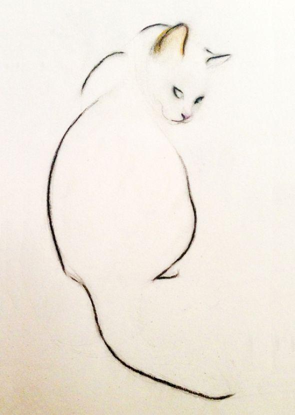 dessin de chat sur toile