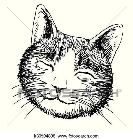 dessin de chat tete