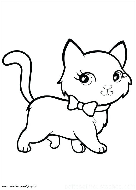 dessin de chat trop mignon