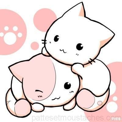 dessin de chat trop mimi