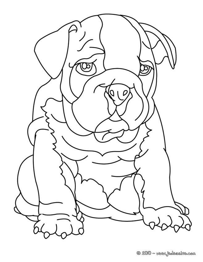 dessin de chien a colorier en ligne