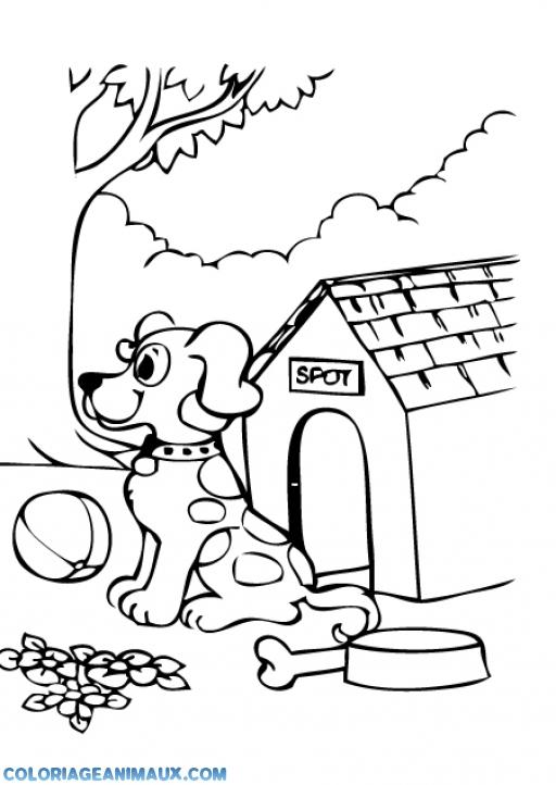 dessin de chien avec niche - Les dessins et coloriage