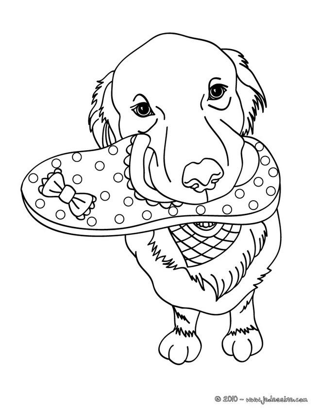 dessin de chien avec son maitre