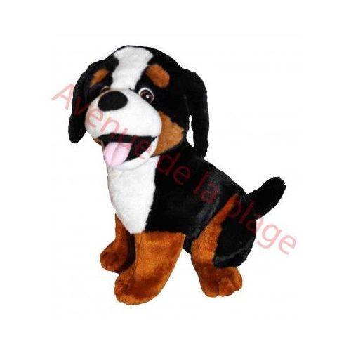dessin de chien bouvier bernois