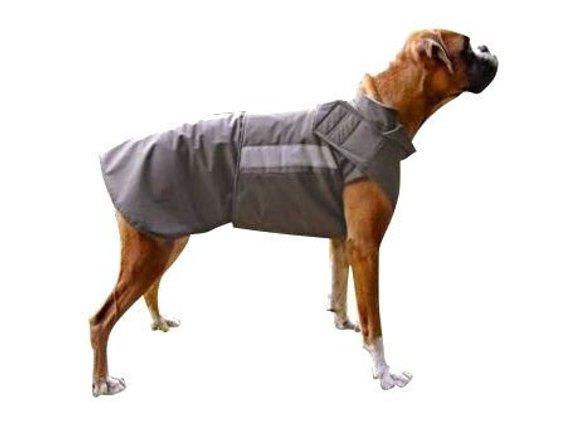 dessin de chien boxer