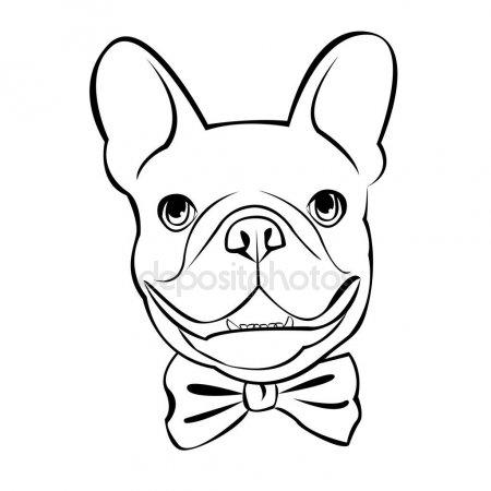 dessin de chien bulldog