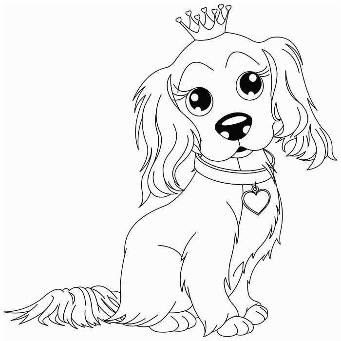 dessin de chien colorier