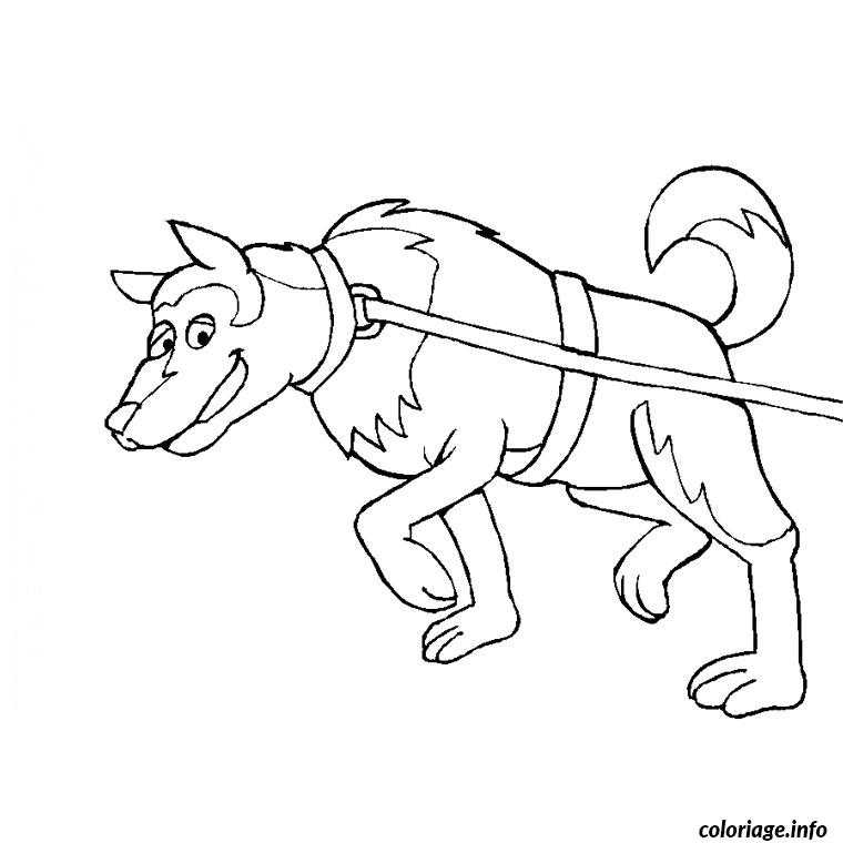 dessin de chien de traineau a imprimer