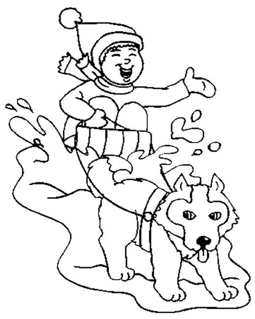 dessin de chien de traineau