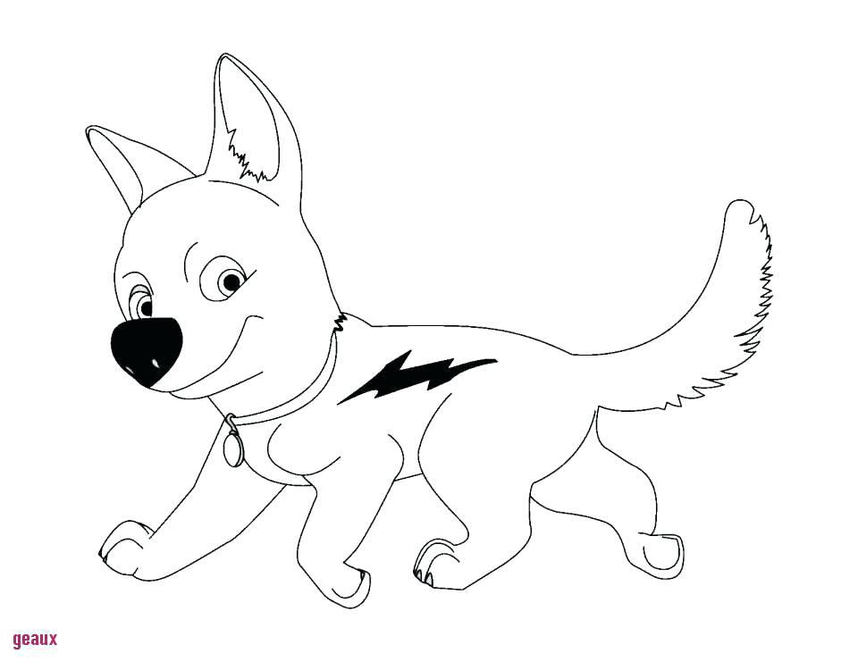 dessin de chien et chat facile