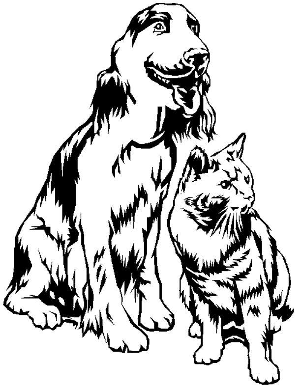 dessin de chien et de chat