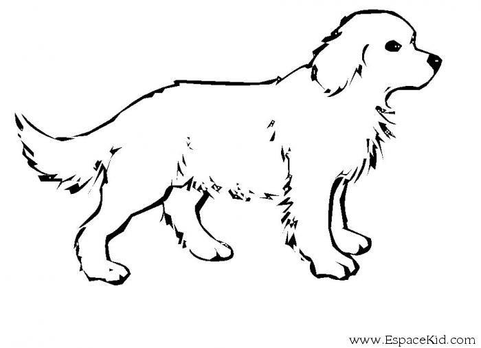 dessin de chien facile a imprimer