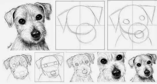 dessin de chien fait a la main
