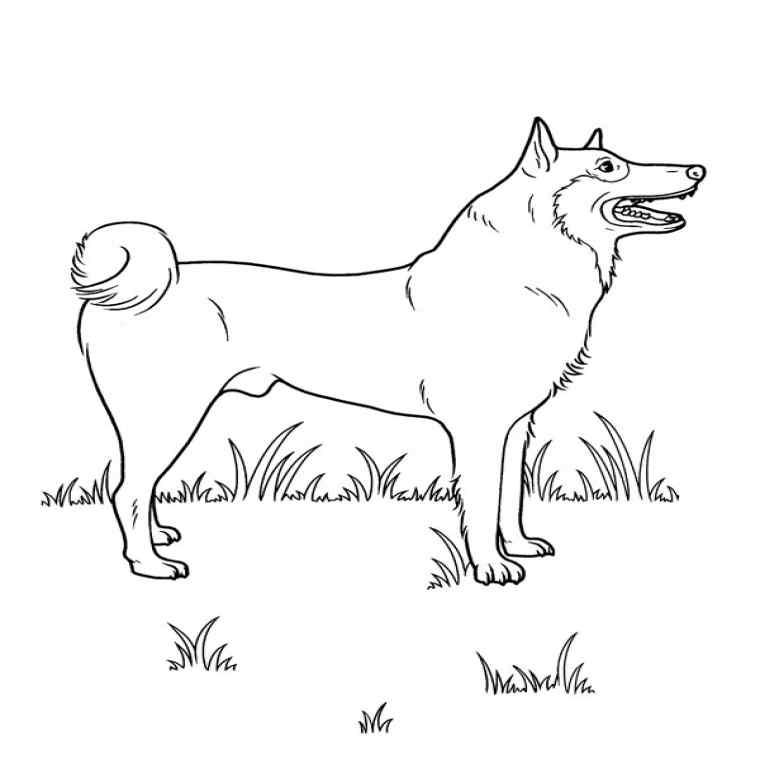 dessin de chien gratuit