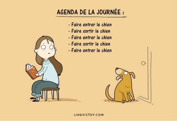 dessin de chien humoristique