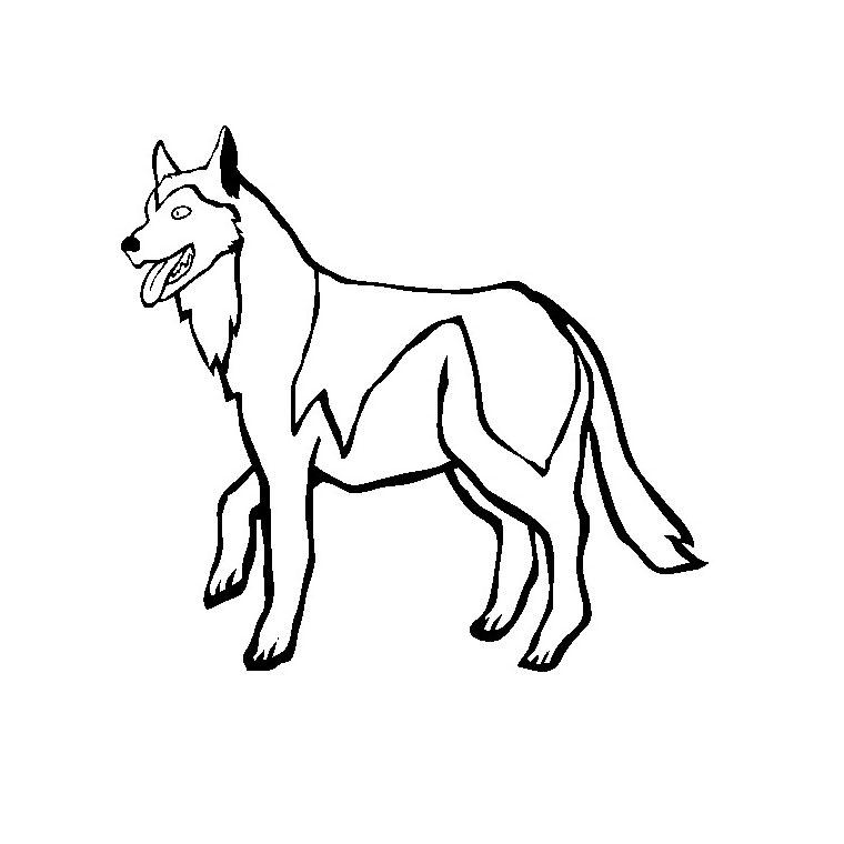 dessin de chien husky a imprimer - Les dessins et coloriage