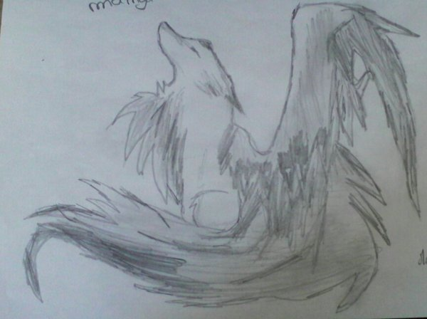dessin de chien manga