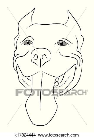 dessin de chien pitbull