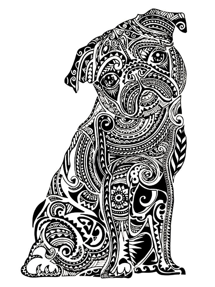 dessin de chien pour adulte