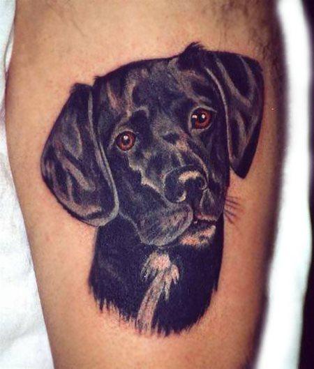 dessin de chien pour tatouage