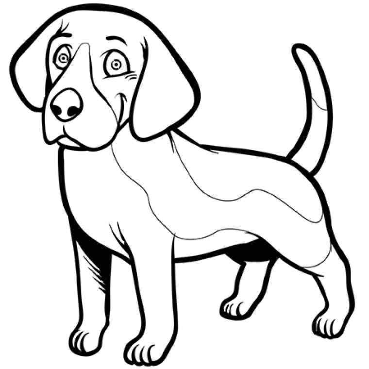 dessin de chien saucisse - Les dessins et coloriage