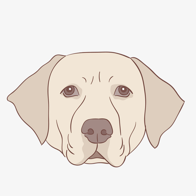 dessin de chien tete