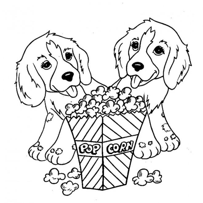 Dessin de chien trop mignon a imprimer gratuit les - Dessin d un chien ...