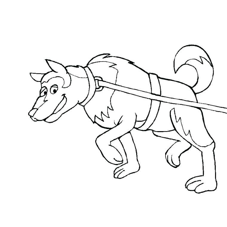 dessin de chien trop mimi