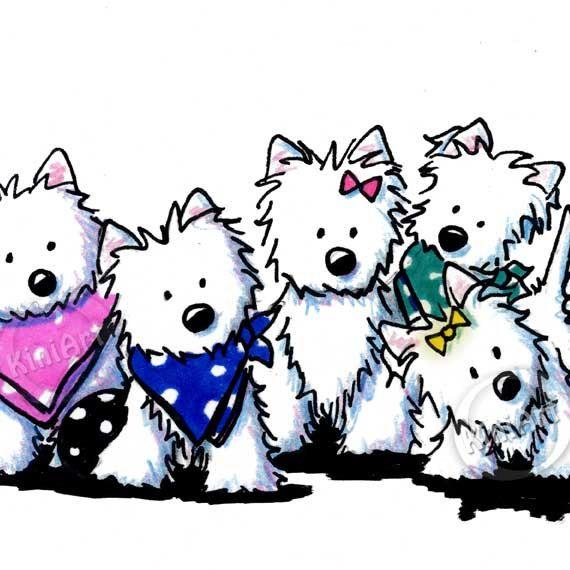 dessin de chien westie