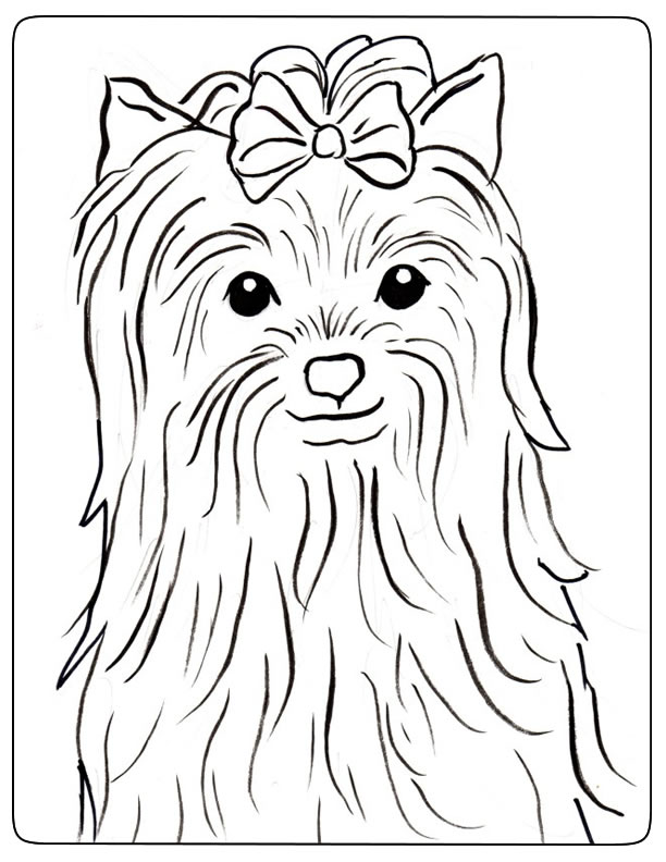 dessin de chien yorkshire a colorier - Les dessins et ...