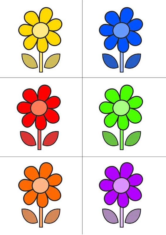 Image Dessin Fleur Couleur