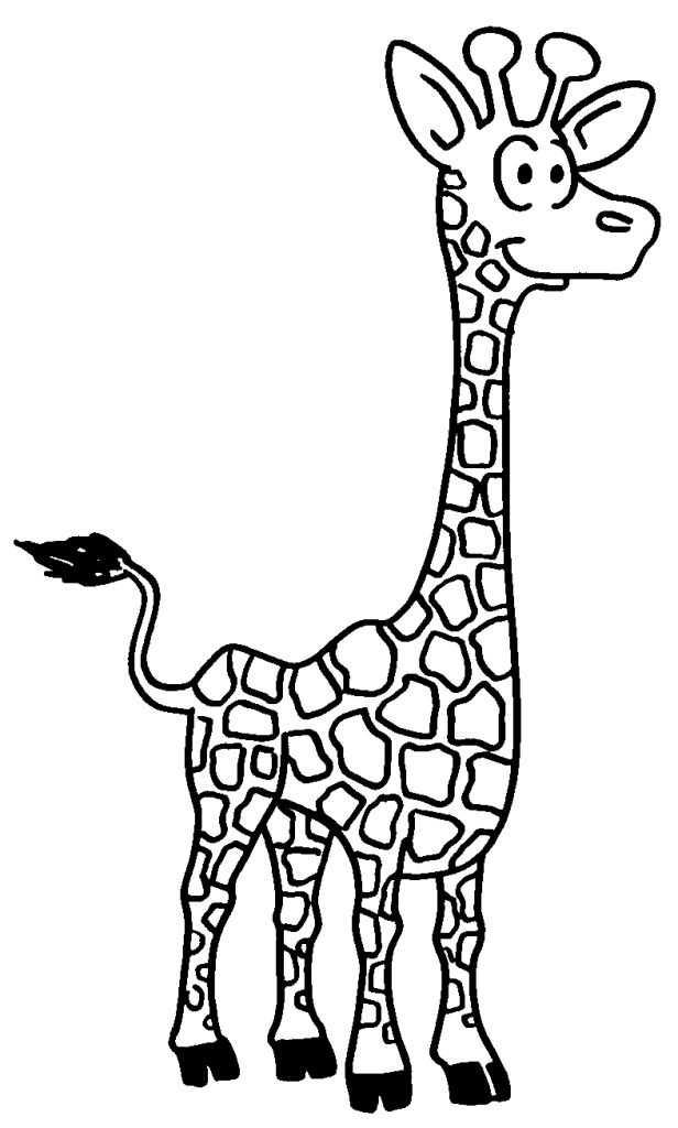 dessin de girafe - Les dessins et coloriage