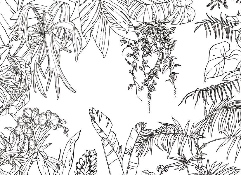 dessin de jungle