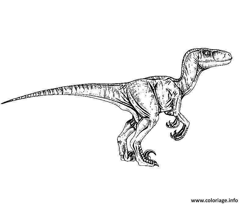 Coloriage Dinosaure Jurassic Park Gratuit A Imprimer.Dessin De Jurassic World Les Dessins Et Coloriage