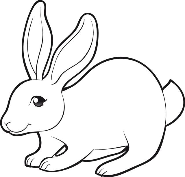 dessin de lapin a imprimer