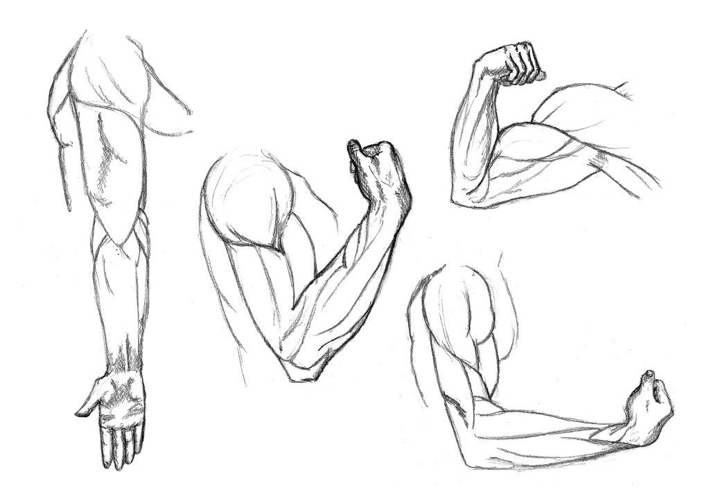 dessin manga bras