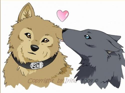 Dessin manga kawaii animaux les dessins et coloriage - Dessin manga animaux ...